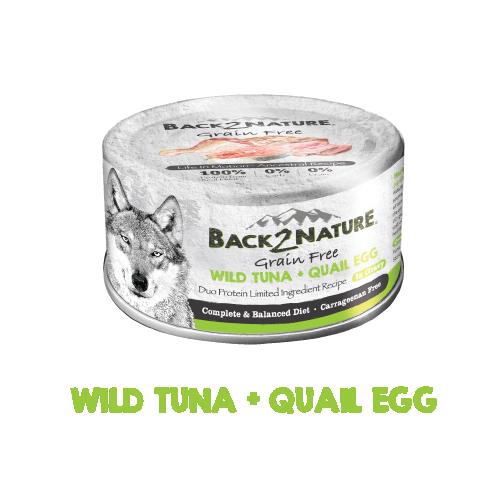 B2N wild tuna + quail egg-01